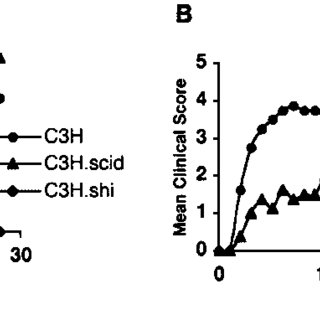 (PDF) A Pathogenic Role for Myelin-Specific Cd8 T Cells in