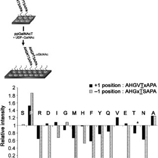 Determination of the acceptor specificity of the