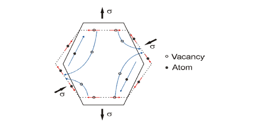 3: Schematic representation of the diffusion paths: one