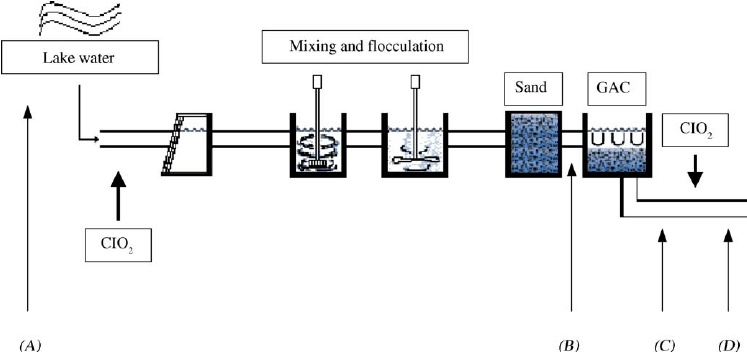 Schematic diagram of sampling points in the drinking water