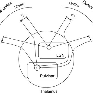 Attentional selection in NTVA: combined effects of