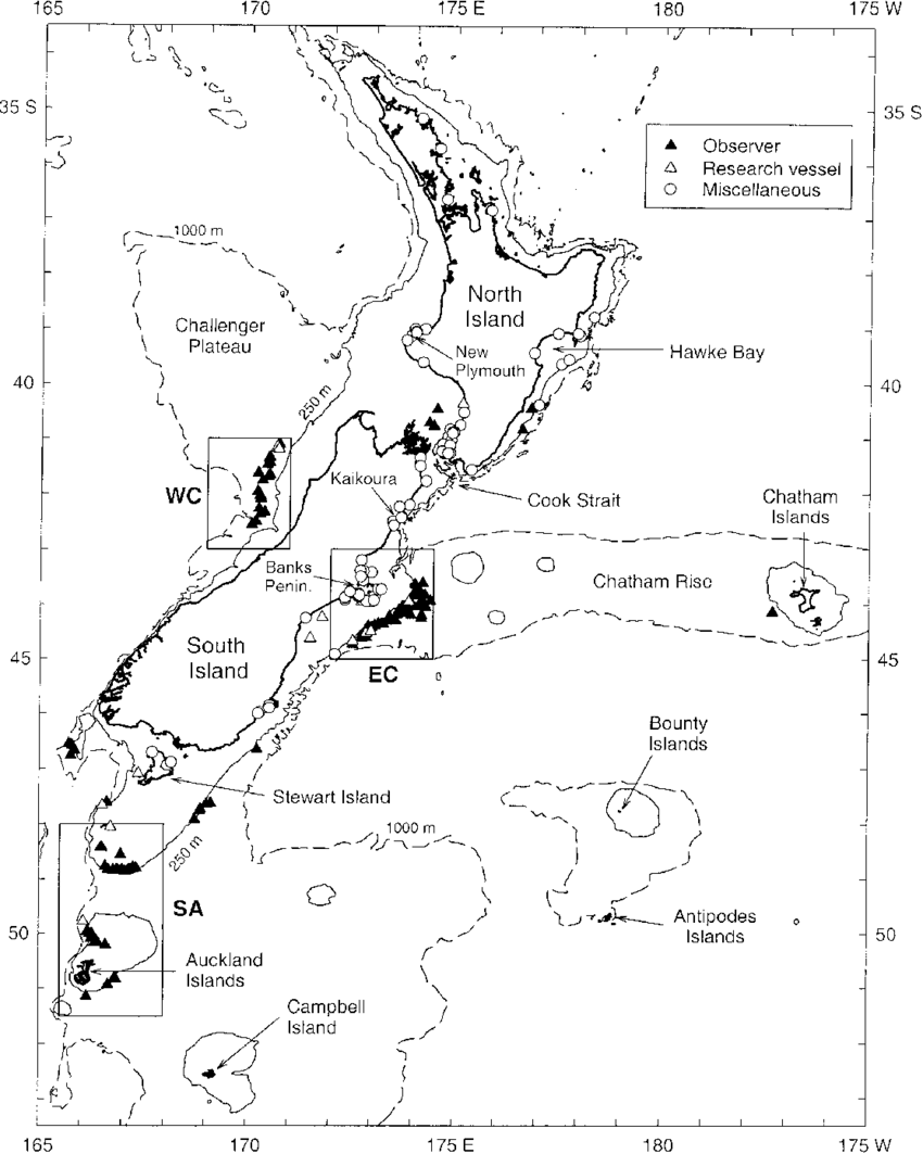 medium resolution of map of the new zealand region showing the locations of cetorhinus download scientific diagram