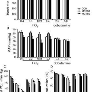 (PDF) Increased in vivo mitochondrial oxygenation with