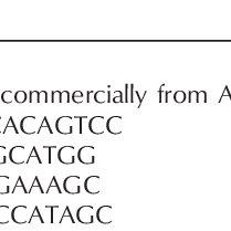 (PDF) Glucocorticoid effects on chondrogenesis