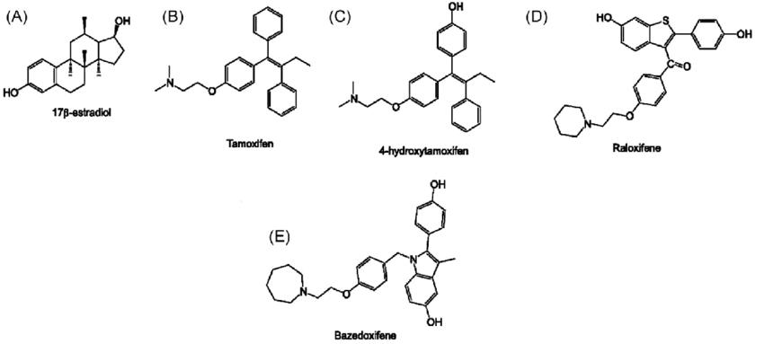 3 Structure of estrogen receptor modulators. (A) 17β