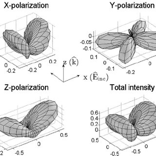 Distribution of x- polarized second harmonic scattering