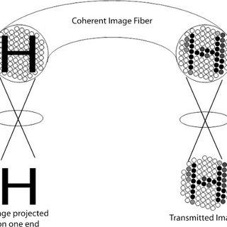 Image transmission through a coherent fiber bundle. In
