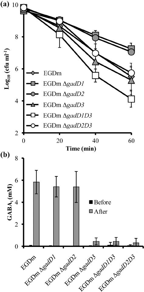 Acid survival and GABA i production of L. monocytogenes