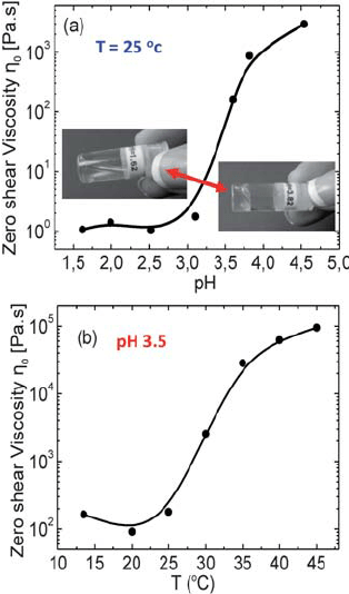 Rheological properties of the pentablock terpolymer PMMA