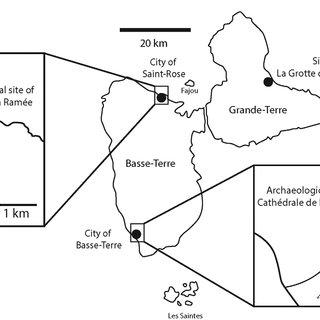 (PDF) A fossil Diploglossus (Squamata, Anguidae) lizard