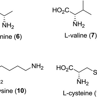 (PDF) Arginase Inhibitors: A Rational Approach Over One