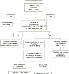 algorithm for patients with clinical stage i lung cancer and limited pulmonary function due to emphysema [ 850 x 1077 Pixel ]
