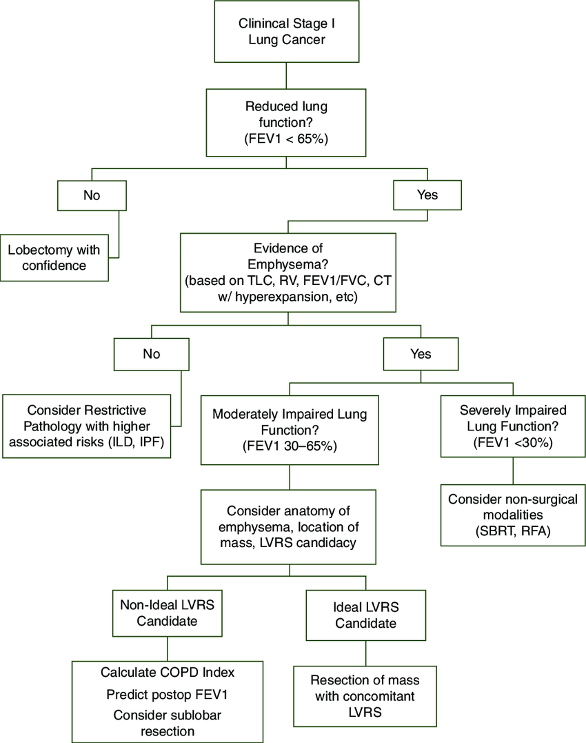 hight resolution of algorithm for patients with clinical stage i lung cancer and limited pulmonary function due to emphysema