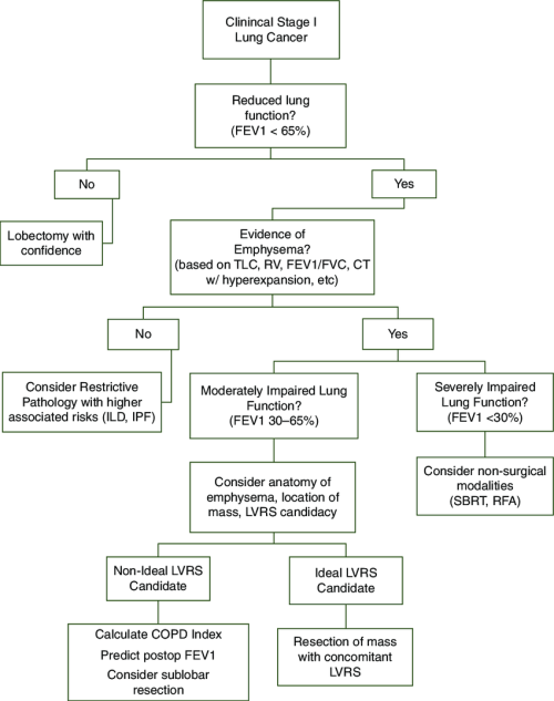 small resolution of algorithm for patients with clinical stage i lung cancer and limited pulmonary function due to emphysema