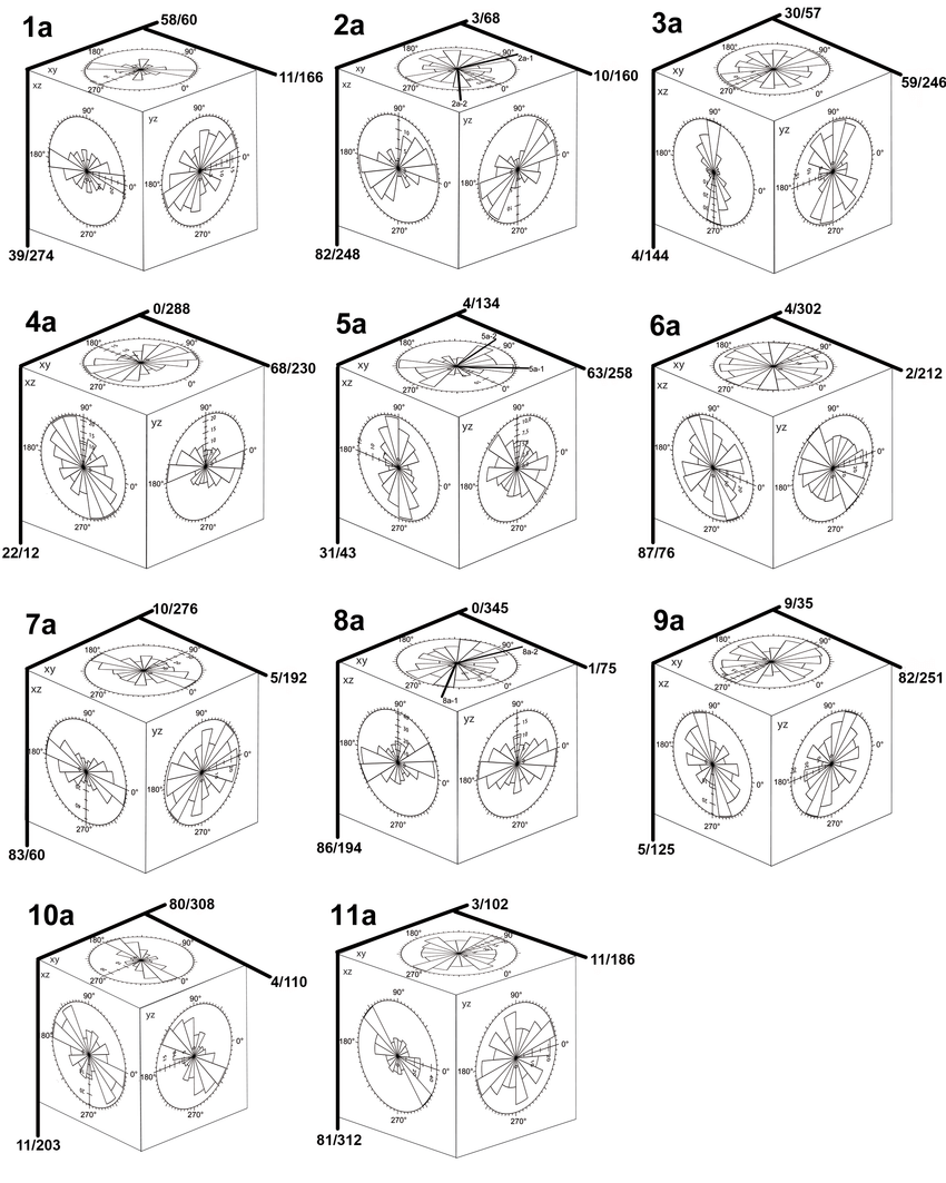 hight resolution of suevite cubes from the aum hle quarry with rose diagrams on each download scientific diagram