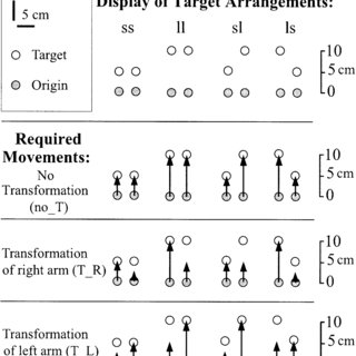 Movement types applied in this study. Letter codes above