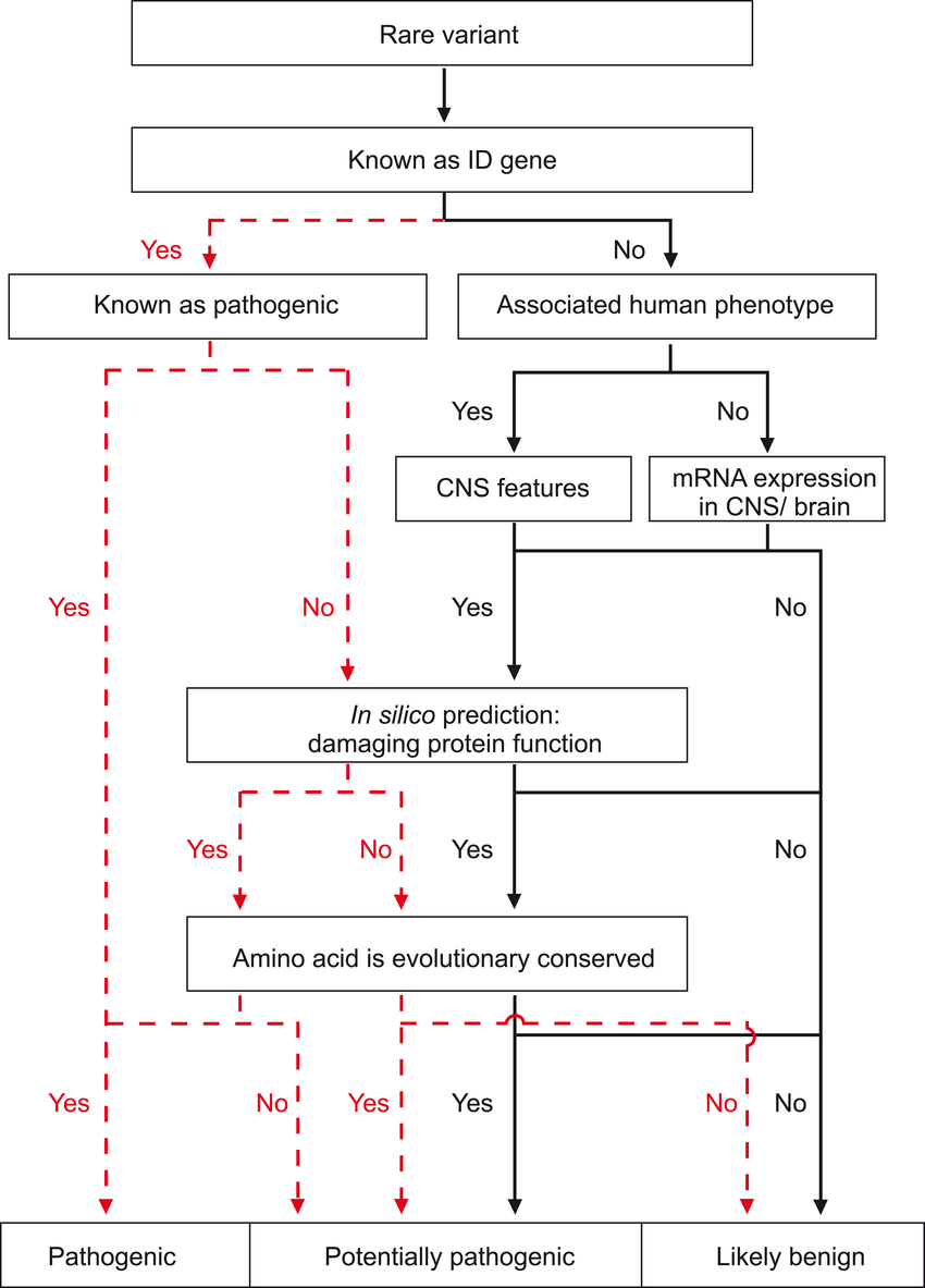 hight resolution of flow diagram showing step by step variant classification of segregating recessive sequence variants