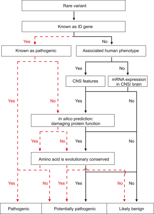 small resolution of flow diagram showing step by step variant classification of segregating recessive sequence variants
