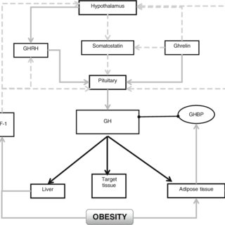 (PDF) Obesity, Growth Hormone and Exercise