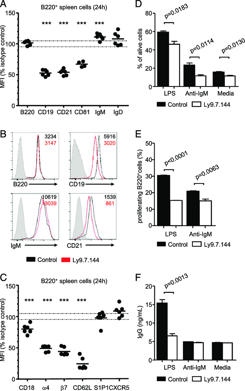 Anti-Ly9 treatment decreases surface expression of B cell
