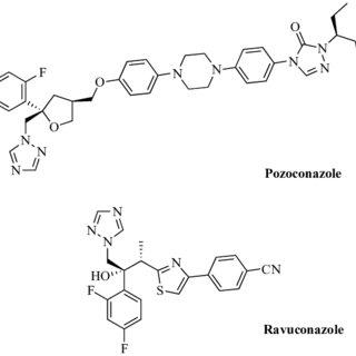 Type I nitroreductases reduce the nitro group to generate