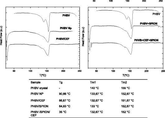 DSC assay for PHBV nanoparticles. The melting temperature