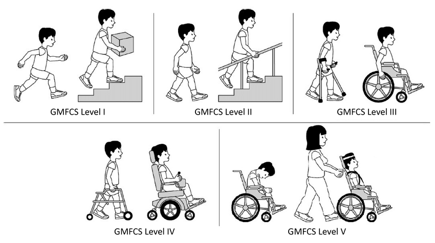 2: Levels of Gross Motor Function Classification System