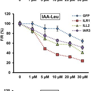 (PDF) Hydrolases of the ILR1-like family of Arabidopsis