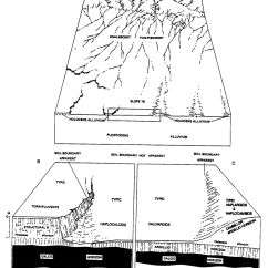 Horizon Diagram Soil Formation Boat Light Wiring Illustration Of The Effect High Carbonate Parent Material On In Organ Alluvium Late And Middle Holocene Jornada Ii