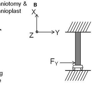 Process flow for 2D transverse flexible cable module