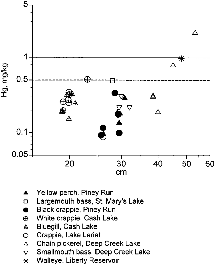 hight resolution of relationship between hg concentration and length for all maryland freshwater sport fish examined except striped