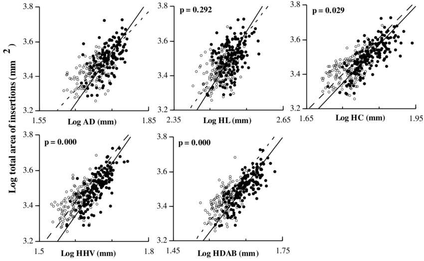 4 RMA regressions of total area of insertions vs. skeletal