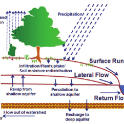 Forest Canopy Diagram Mazda 6 Wiring Radio Schematic Of Hydrologic Processes Simulated In Swat. | Download Scientific