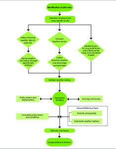 Proposed flow chart for the process of piloting weather index based insurance also rh researchgate