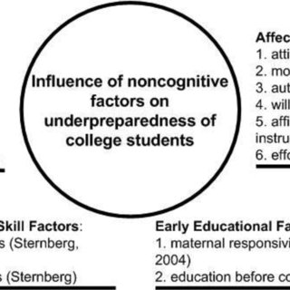 (PDF) Non-cognitive Skills and Factors in Educational
