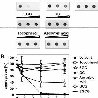 (PDF) Green tea (-)-epigallocatechin-gallate modulates