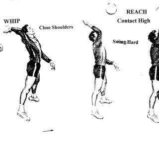 (PDF) Kinesio taping effect on biceps brachii muscle strength