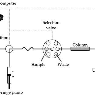 SIC chromatogram of separation of the standard solution