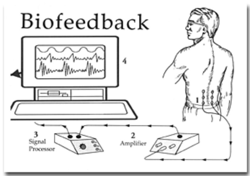 Working principles of Biofeedback (Behavioral Medicine