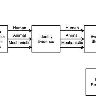 Hierarchy of evidence pyramid. The pyramidal shape