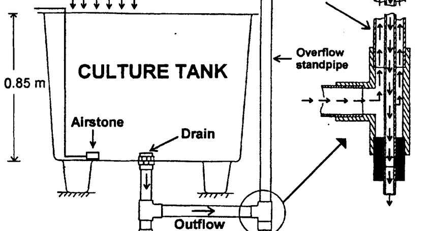 -Schematic representation of a culture tank and its