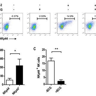 A) FACS plot analysis of NKp44 expression from NK cells
