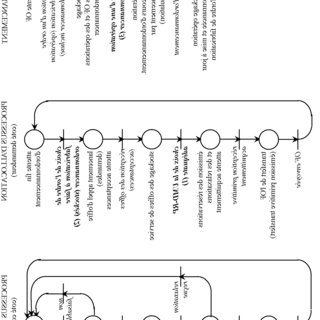 Generalized flow chart for calculating risk based on fuzzy