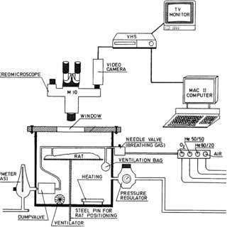 Experimental setup with pressure chamber, connections, and