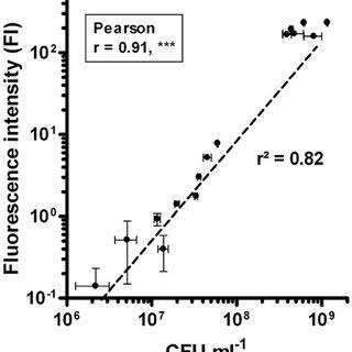 (PDF) Noninvasive Quantification of Green Fluorescent