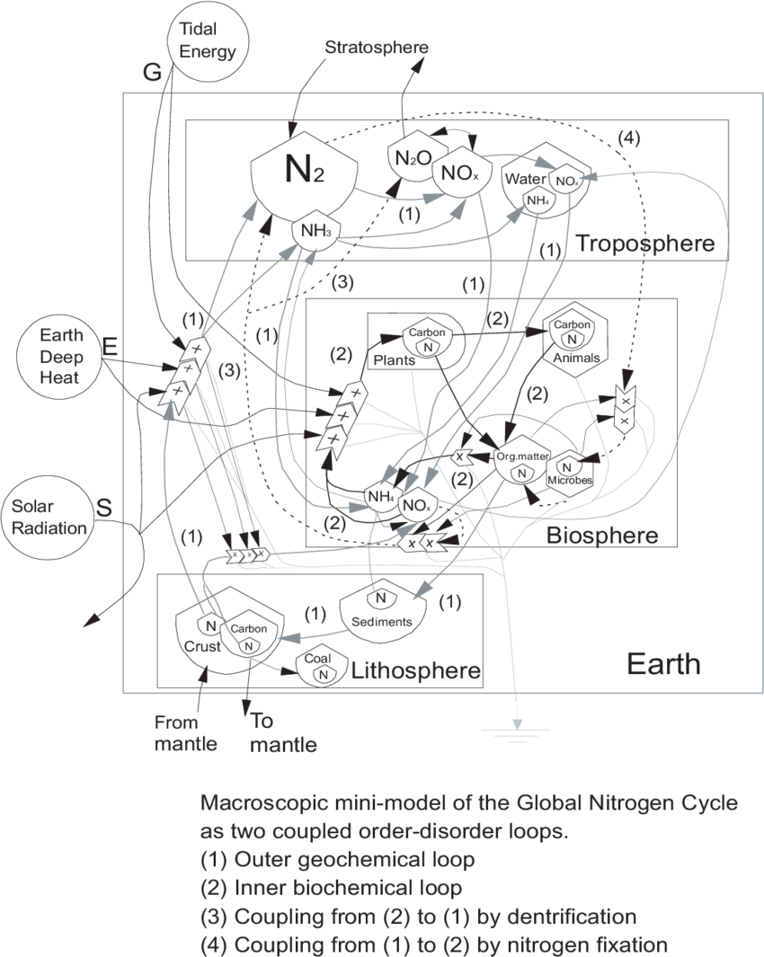 hight resolution of an overview energy systems model of the global nitrogen cycle diagramed as two coupled order