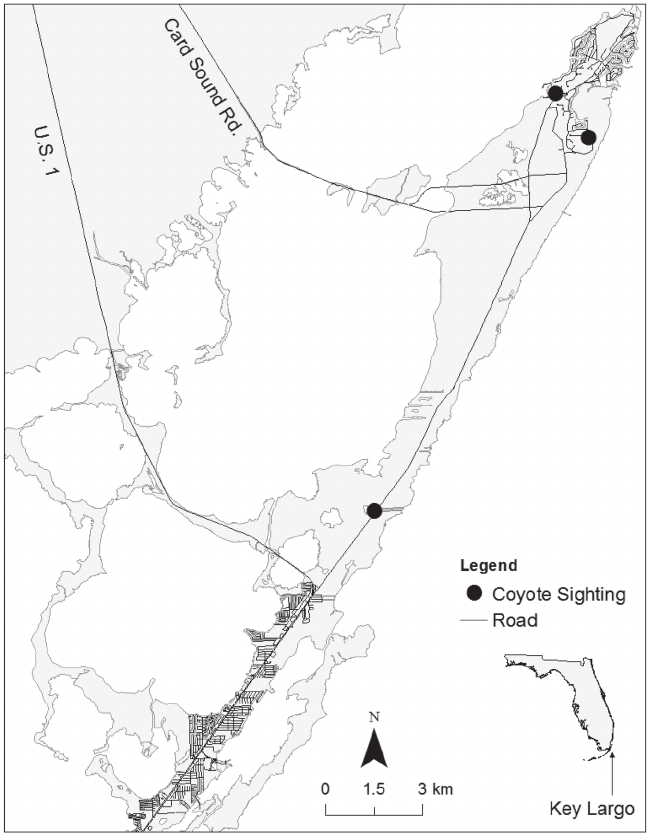 Locations of where a coyote was observed on north Key