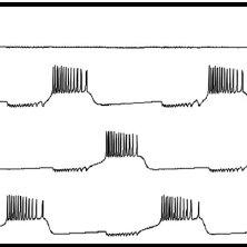 The Labview 'block diagram' programming environment
