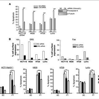 (PDF) c-FLIP: A Key Regulator of Colorectal Cancer Cell Death