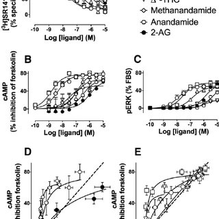 Gastric effects of nitric oxide (NO)-releasing NSAIDs. The